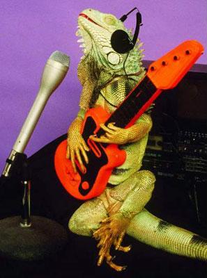 http://www.bbc.co.uk/portuguese/especial/images/108_lagartosfotos/5104316_lagarto_guitarra_g.jpg