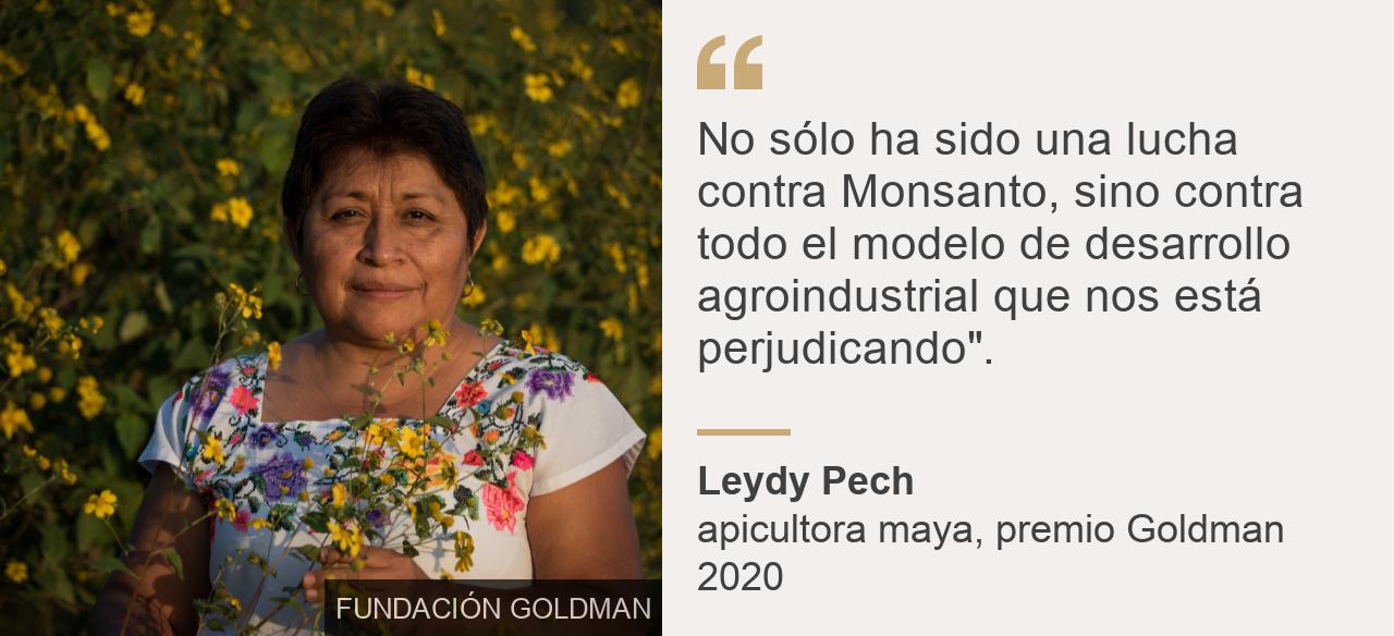 """""""No sólo ha sido una lucha contra Monsanto, sino contra todo el modelo de desarrollo agroindustrial que nos está perjudicando""""."""", Source: Leydy Pech, Source description: apicultora maya, premio Goldman 2020, Image: Leydy Pech"""